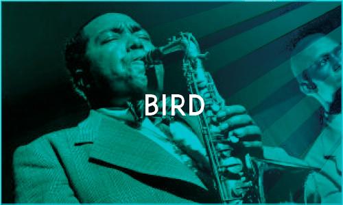 Bird sponsorpakket BGH